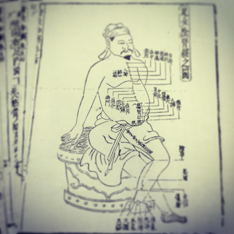 経絡イメージ